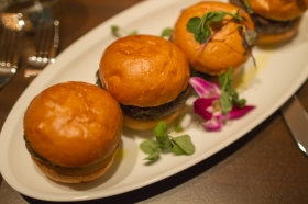 Duck Sliders